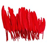 50pcs Home Decor Dark Red Goose Feather
