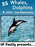 25 Whales, Dolphins and other Sea Mammals. Amazing facts, photos and video links to fascinating sea animals! (25 Amazing Animals Series Book 8)