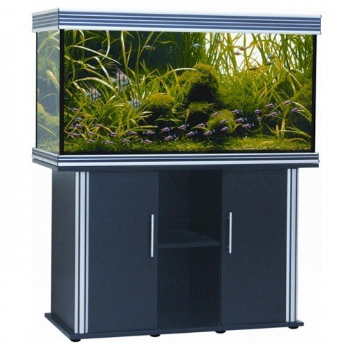 Nautilus III 75 Gallon Aquarium with Silver Trim and Stand