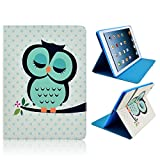 Lovely Owl New Folding Folio Case Skin Bag for Apple Air 1 - 5 5th Generation. iPad Holder with Green/Blue Sleeping Owl Design. Smart Cute Stylish Fashionable PU Leather Folding Folio Magnetic Case, Sleeve with Flip Cover and Folding Stand. (iPad Air 5,