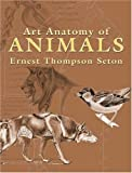 Art Anatomy of Animals (Dover Books on Art Instruction)