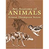 Art Anatomy of Animals (Dover Books on Art Instruction)by Ernest Thompson Seton