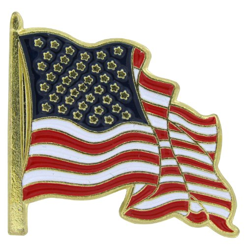 US Flag Store Waving Lapel Pin USA Flag