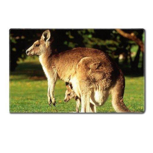 Animal Wildlife Kangaroo Mother Baby Australia Outback Table Mats Customized Made To Order Support Ready 24 Inch (610Mm) X 14 15/16 Inch (380Mm) X 1/8 Inch (4Mm) High Quality Eco Friendly Cloth With Neoprene Rubber Luxlady Small Deskmat Desktop Mousepad L front-1014188