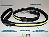 LED Light Up Dog Leash - GlowLEASH by GlowHERO - High Visibility LED Leash w/ Reflective Stitching - Replaceable Battery - Strength Tested (Neon Green, 4.2ft)