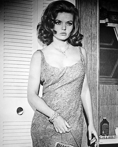 deanna-lund-10-x-8-promozionale-foto-sexy-pose-in-a-taglio-basso-vestito-tony-roma