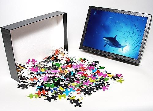 Photo Jigsaw Puzzle Of Grey Reef Shark