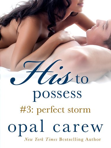 His to Possess #3: Perfect Storm by Opal Carew