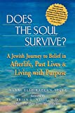 Image of Does the Soul Survive?: A Jewish Journey to Belief in Afterlife, Past Lives & Living with Purpose