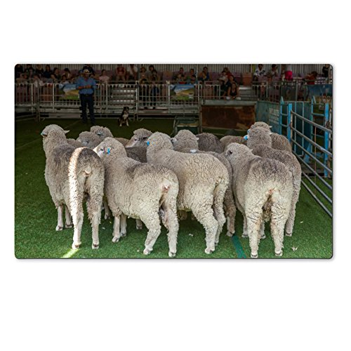 liili-large-table-mat-2015-sydney-royal-easter-show-natural-rubber-material-image-16958187696