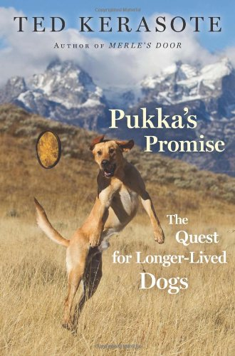 Pukka&#39;s Promise: The Quest for Longer-Lived Dogs