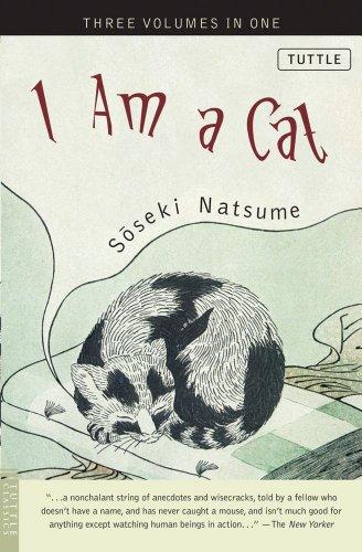 Soy un gato