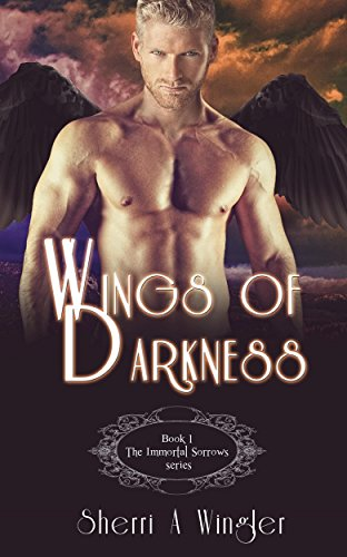Wings Of Darkness by Sherri Wingler ebook deal