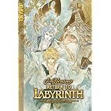 Return to Labyrinth Volume 2 (v. 2) ~ Jake T. Forbes