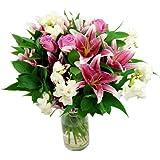 Clare Florist Astounding Cascade Fresh Flower Bouquet