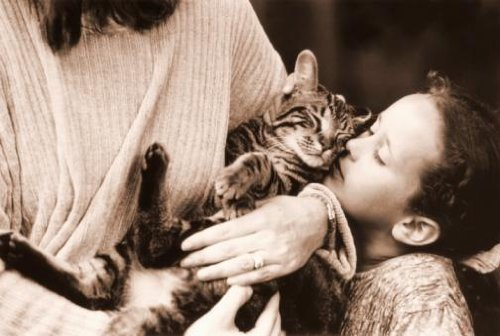 "Girl Kissing Cat in Arms of Woman - 42""W x 28""H - Peel and Stick Wall Decal by Wallmonkeys"