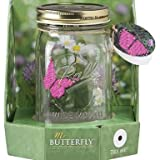 My Butterfly Collection - Animated Butterfly in a Jar - Pink Morpho