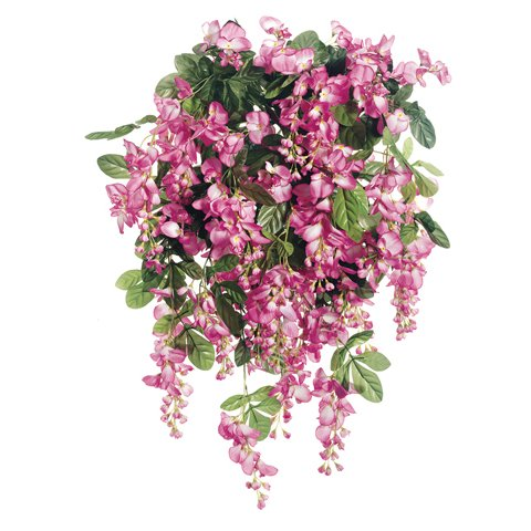 Flower Shrubs Png 240 Flower Bush Png 1496