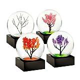 Mini Seasons set of 4 Snow Globes