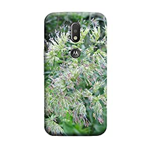 iShell Premium Printed Mobile Back Case Cover With Full protection For Moto G4 Plus (Designer Case)