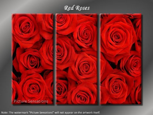 Framed Huge 3 Panel Modern Art Floral Red Roses Giclee Canvas Print