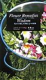 フラワーレメディーズ ウィズダム—花びらの癒しの手紙、心への返信