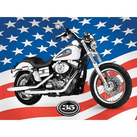 Harley Davidson Freedom Machine Jigsaw Puzzle 500pc