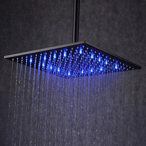 Ollypulse 12'' Square Color Changing LED Stainless Steel Rain Shower Head, Oil Rubbed Bronze Finish, Black (Shower Head 12 Led compare prices)