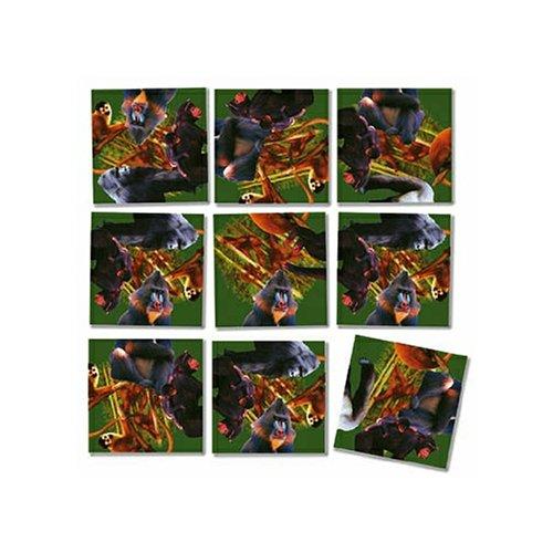 Cheap Fun B Dazzle Primates Scramble Squares 9 Piece Puzzle (B000BWZRCI)