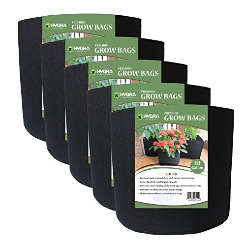 Grow Bags Fabric Planter Raised Bed Aeration Container 5 Pack Black (10 gallon) (10 Gallon Plastic Flower Pots compare prices)