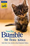 Samantha Hay Bumble the Brave Kitten: In association with Cats Protection