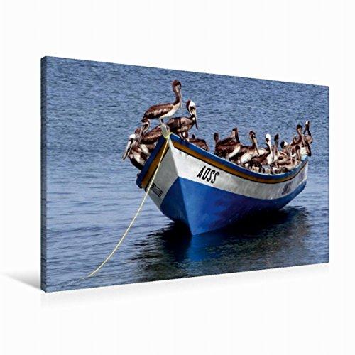Leinwand ein motiv aus dem kalender pelikan und co for Schreibtisch 90x60