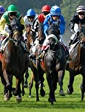 Horse Racing Ultimate Method To Winner Finding On The Flat