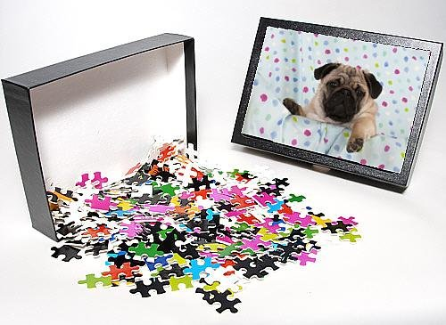 Photo Jigsaw Puzzle Of Jd-22756 Dog - Pug Puppy On Spotted Blanket front-989419