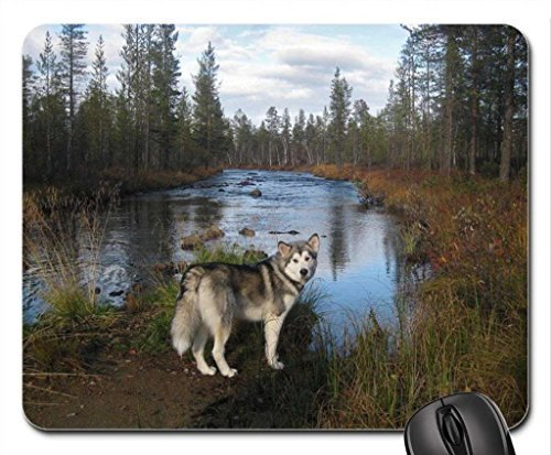 AN OUTING AT THE LAKE Mouse Pad, Mousepad (Lakes Mouse Pad)