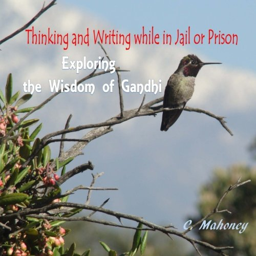 Thinking and Writing while in Jail or Prison:  Exploring the Wisdom of Gandhi image