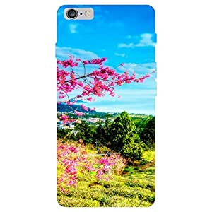 Zeerow Hard Case Mobile Cover for I Phone 5s