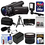 Sony Handycam FDR-AX100 Wi-Fi 4K HD Video Camera Camcorder with 64GB Card + Case + LED Light + Battery + Mic + Tripod + Fisheye Lens + Kit