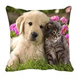 meSleep Cute Animals Digitally Printed Cushion Cover (16x16)