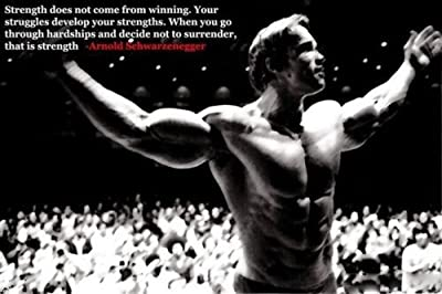 Ben -Alexander Arnold Schwarzenegger Silk Poster Motivational Bodybuilding Picture 24X36""