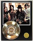 Motley Crue Gold Record Signature Series LTD Edition Display