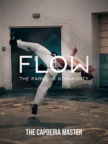 The Capoeira Master