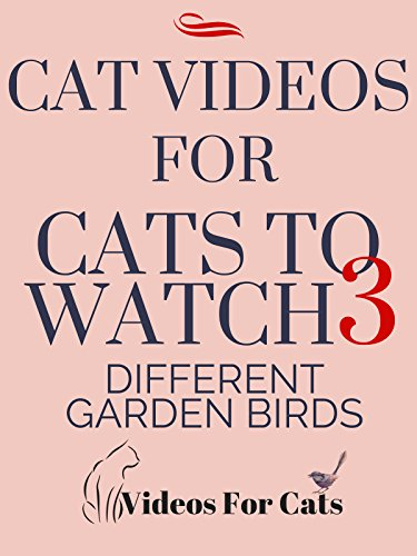Cat Videos for Cats to Watch 3 Different Garden Birds