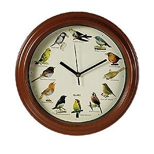 Orologio a muro da parete d33 in plastica Mondo degli uccelli con cinguiettio   cliente recensione Voto