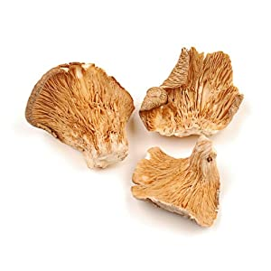 Oyster Mushrooms, 1 Lb Bag