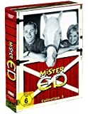 Mr. ED Collection 1: Das sprechende Pferd [3 DVDs]