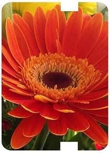Calendula Sunflower White Back Cover Case for Amazon Kindle Fire 7 HD