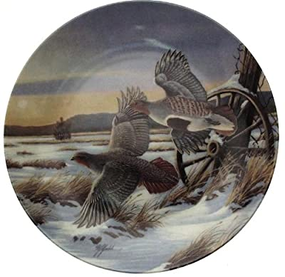 Wilhelm Goebel On Golden Wings First Light collector plate CP1601