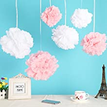 12pcs Mixed 3 Sizes White Pink Tissue Paper Pom Poms Flower Wedding Party Baby Girl Room Nursery Dec