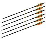 Ten Point Aluminum XX75 Crossbow Arrows (Color May Vary)